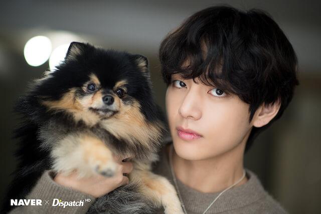 BTSテテと愛犬のヨンタン