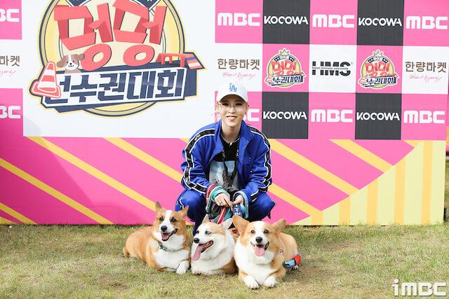 MAMAMOOムンビョルの愛犬たち